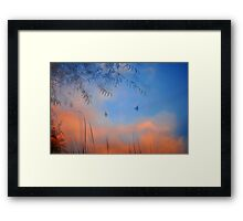 A Simple Dream Framed Print