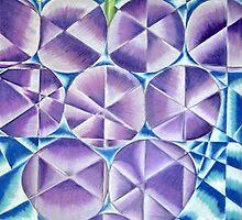 Grapes by Erika Benoit