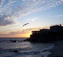 Sunset At Woods Cove by Kismet