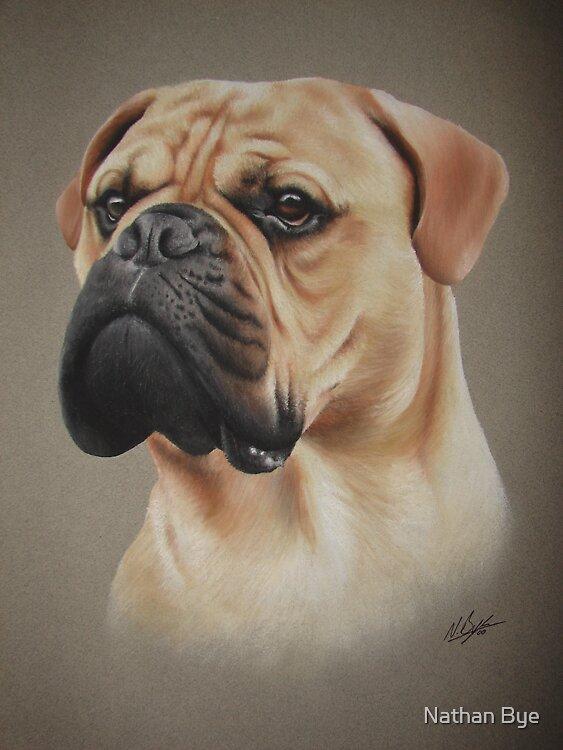 Dog Portrait 01 by Nathan Bye