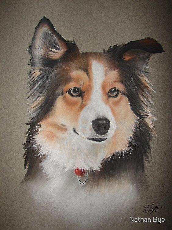 Dog Portrait 03 by Nathan Bye