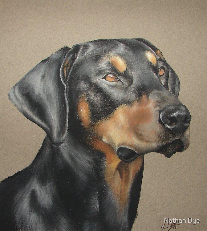 Dog Portrait 05 by Nathan Bye