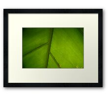 peace in paradise Framed Print