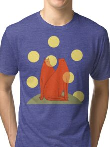 Wonder Cats Tri-blend T-Shirt