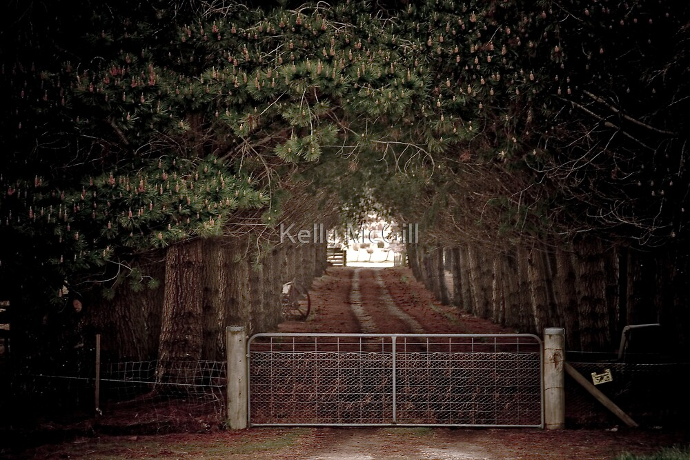 The Gate to Somewhere by Kelly McGill