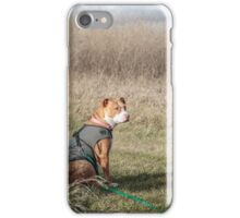 Shelby at Horicon iPhone Case/Skin