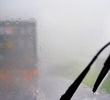 Looking Through A Glass Darkly: Monsoon, Borneo by Carole-Anne