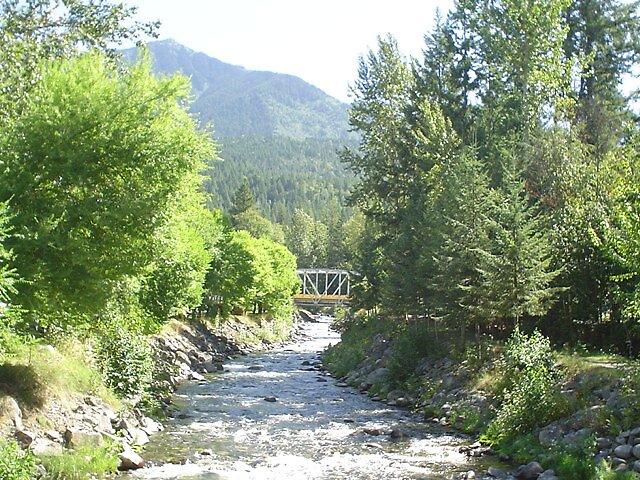 Silverton Creek by Patricia McKinnon