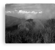 In The Clouds II Canvas Print