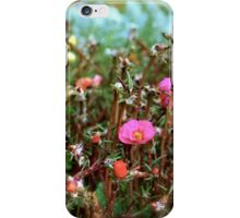 Lil Blessings christmas flowers iPhone Case/Skin