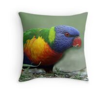 Morning Snack Throw Pillow