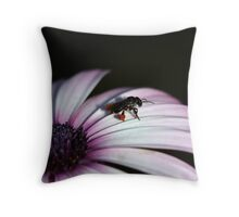 Bee on pinkish white daisy V Throw Pillow