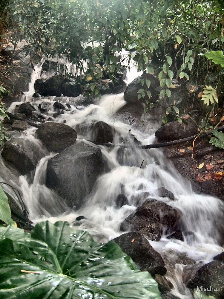 Waterfall in Eden by Mischa