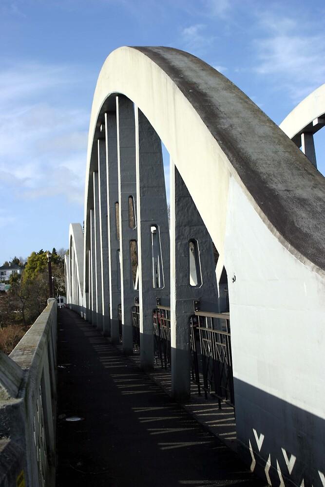 Fairfield Bridge  by Danielle Kennedy Boyd