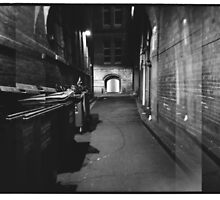 Bridge Street Alley by Steve Liney