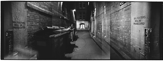 Bridge Street Alley by Steve Liney