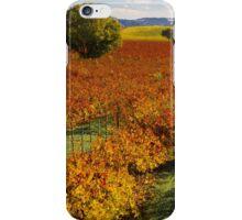 River Road Autumn iPhone Case/Skin