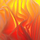 Folds of fire by Janice E. Sheen