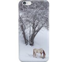 elijah in the snow iPhone Case/Skin