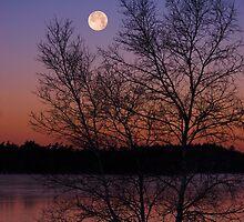 Powder Mill Lake by Ed MacDonald