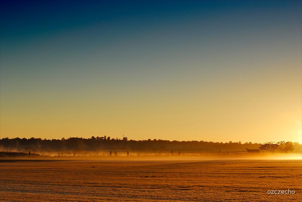 Golden Field by ozczecho
