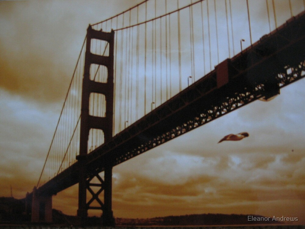 Golden Gate by Eleanor Andrews