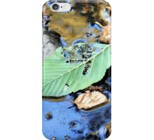 Disintegrating Leaf iPhone Case/Skin
