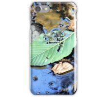 Disintegrating Leaf iPhone Case/Skin