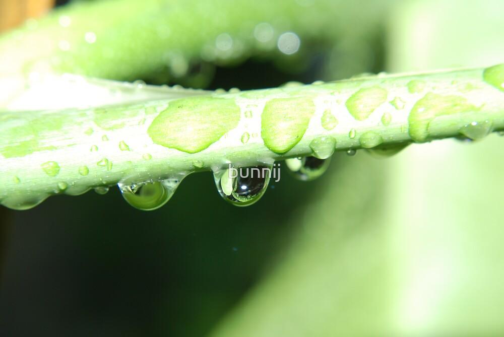 Droplets by bunnij