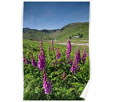 The Coniston Fells Poster