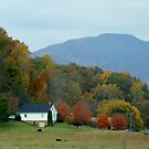 fall in Nelson county by ANNABEL   S. ALENTON