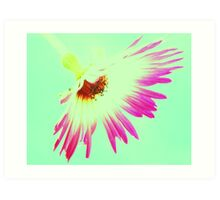 Shocking Pink Daisy On Blue Sky Art Print
