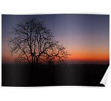 homestay sunset Poster