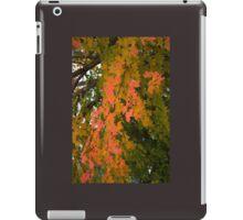 Maple Leaves iPad Case/Skin