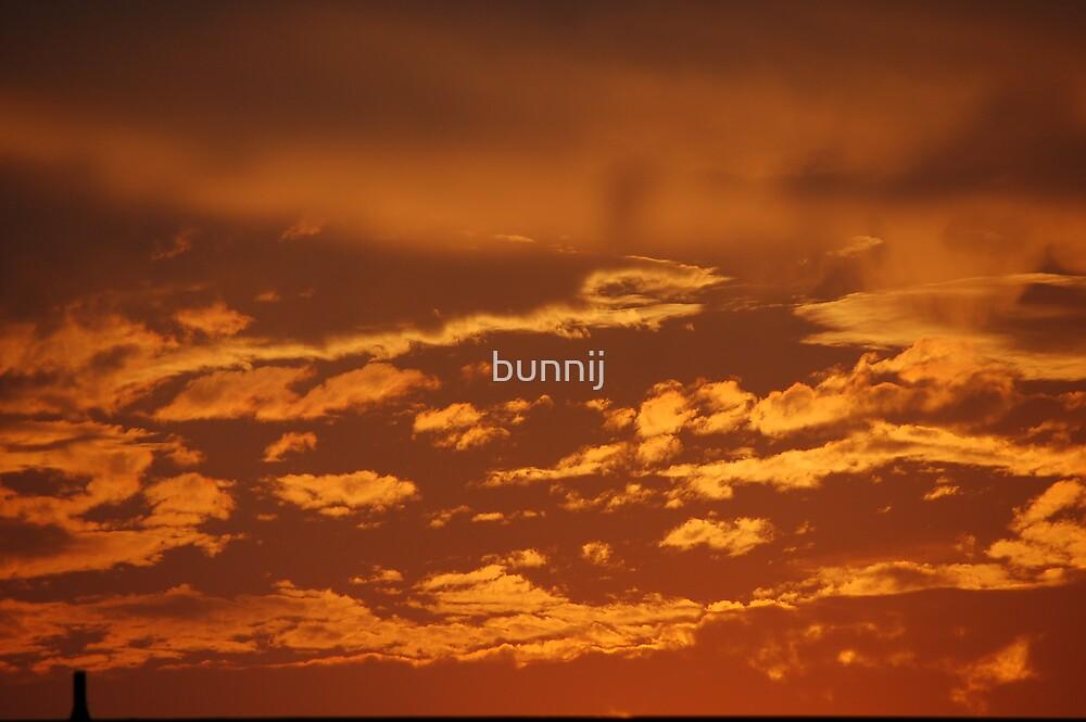 Fiery Summer Sky by bunnij