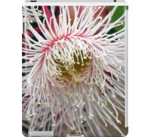Floral Emblem of Tasmania iPad Case/Skin