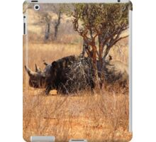 On a Hot Summers Day - kindly donated by Xenia Capton - Volunteer iPad Case/Skin