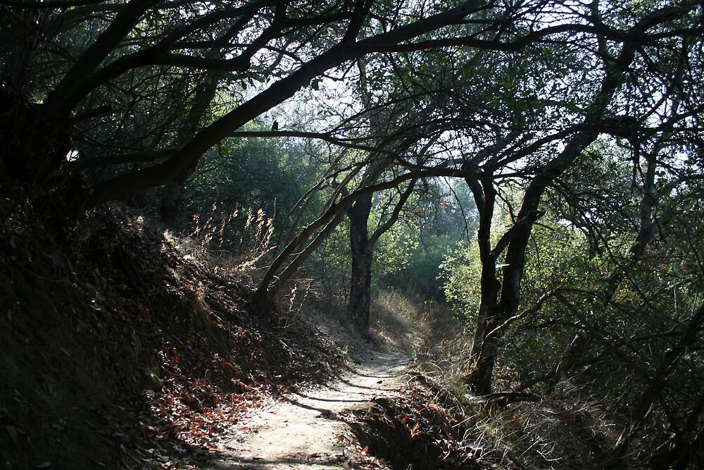 Topanga Canyon - 1 by Francis Alfred
