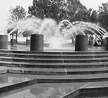 Charleston South Carolina Water Front Park Fountain by Bridgett Cooper