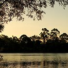 Lake Kurwongbah by Judy Harland