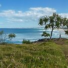 Dreamtime Beach, NSW by Marian Moore