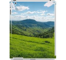 Southwest Road iPad Case/Skin