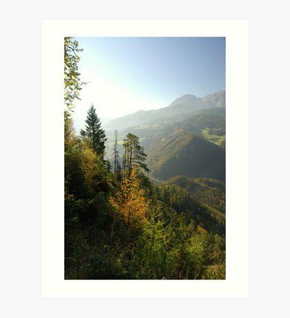 Austrian Forests Art Print