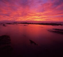 Kaikoura dawn II - NZ by Tony Middleton