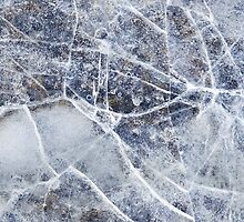 Frozen by David Librach - DL Photography -