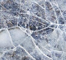 Frozen by David Librach - DL Photography -