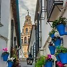 Narrow street and bell tower in Cordoba by Ralph Goldsmith