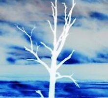 Negative Tree by charmaine
