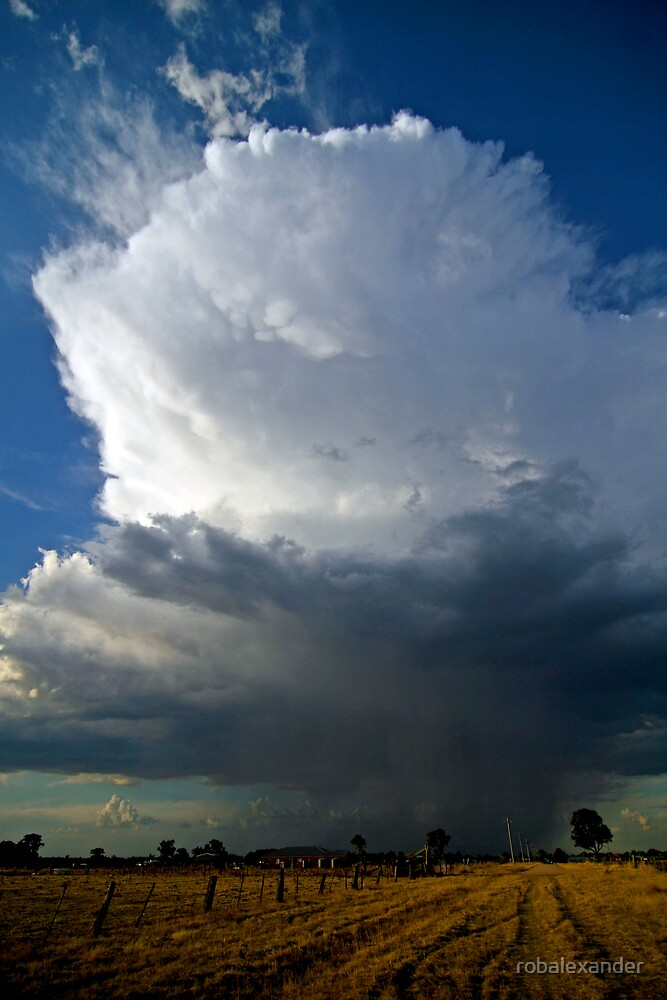 Afternoon Thunderstorm by robalexander