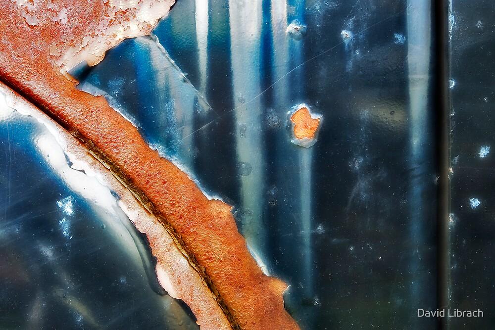 Junkyard Door II by David Librach - DL Photography -